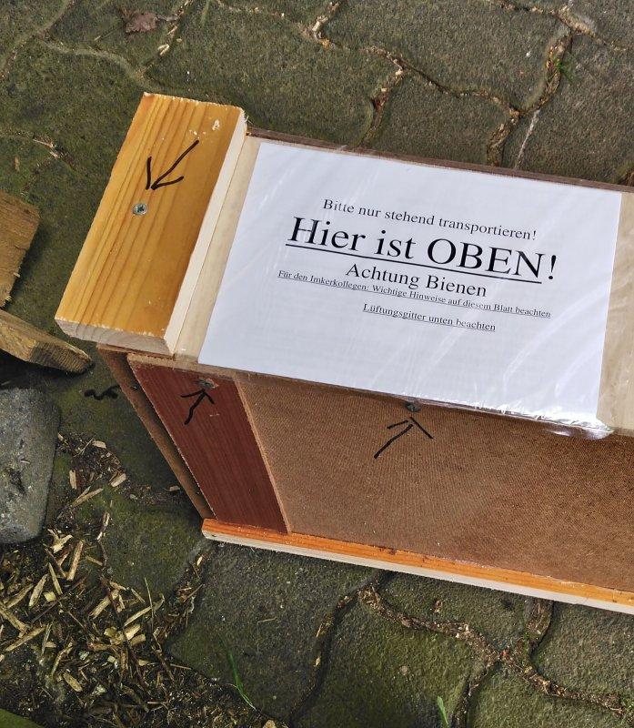 Bienenableger Sofortlieferung mit 2019er Carnika